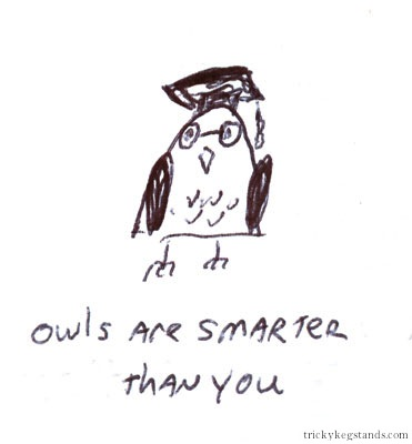 Owls are smarter than you.